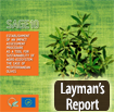 laymans report icon eng
